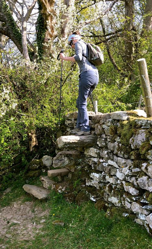 steps_birkby_hall.jpg