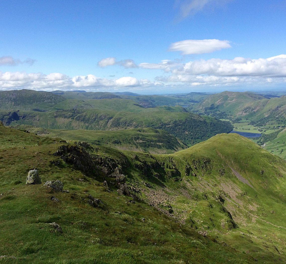 redscrees3.jpg