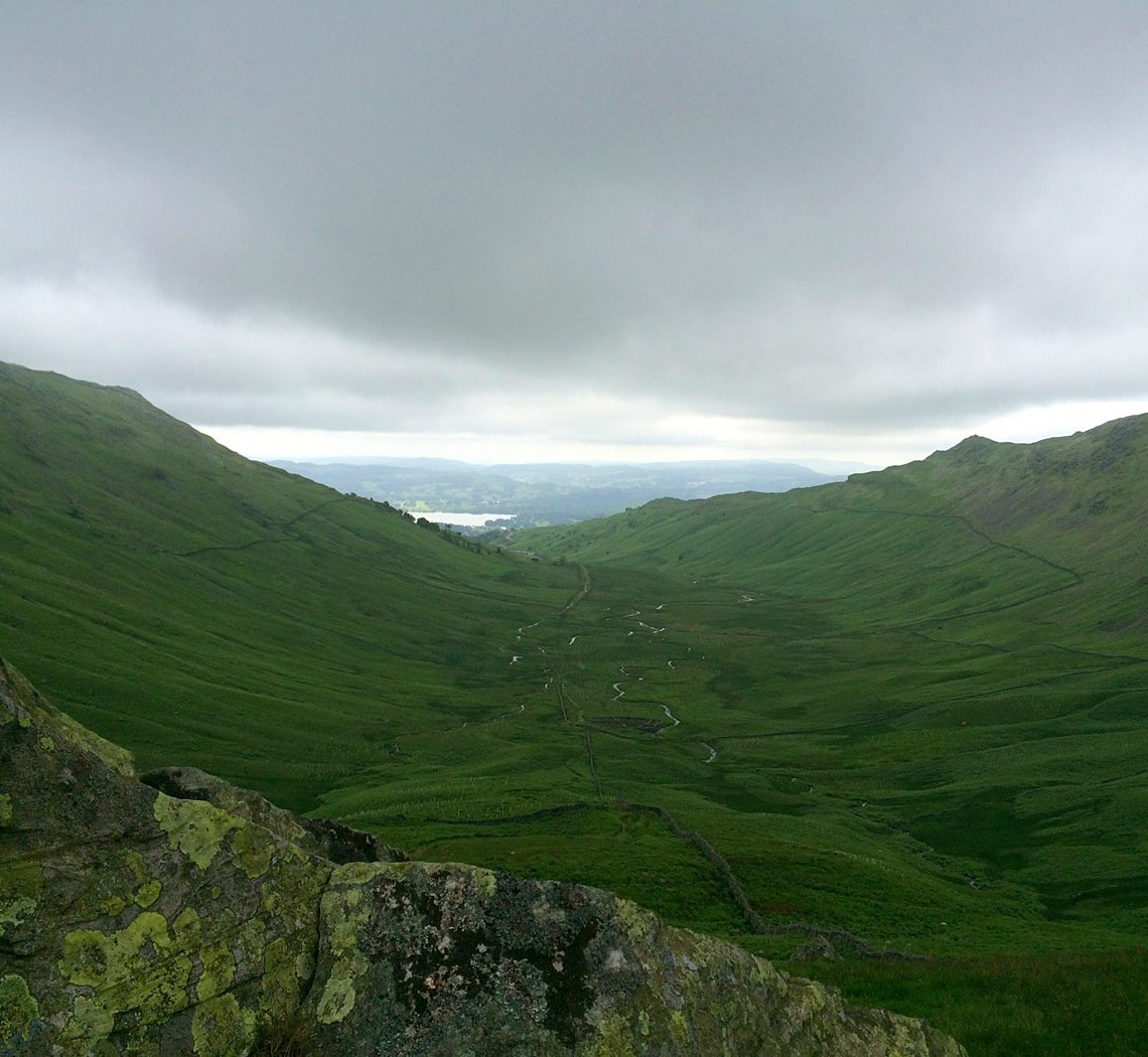 redscrees2.jpg